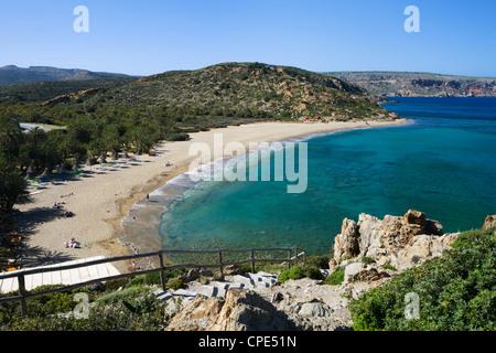 Vai beach, Lasithi region, Crete, Greek Islands, Greece, Europe - Stock Photo
