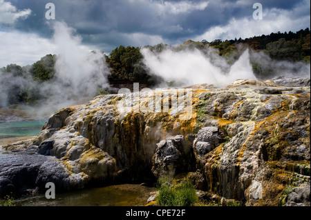 Whakarewarewa Thermal Reserve, North Island, New Zealand, Pacific - Stock Photo