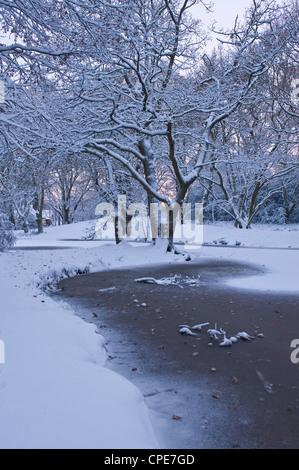 Hampstead Heath in winter, North London, England, United Kingdom, Europe - Stock Photo
