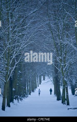Hampstead Heath in winter, London, England, United Kingdom, Europe - Stock Photo