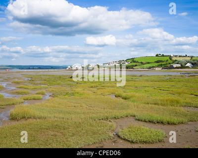 Appledore and Skern saltlats beside the Taw and Torrage estuary, Devon, England, United Kingdom. - Stock Photo