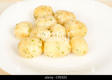 Early potatoes boiled with dill closeup - Stock Photo