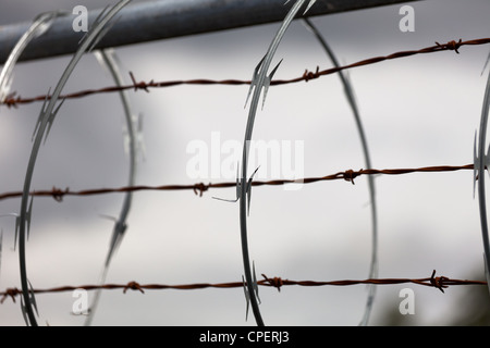 Barbed Wire and Razor Wire - Stock Photo