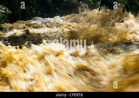 Mud and water pouring down a jungle watercourse after very heavy rain. On the Pacific coast of Ecuador. - Stock Photo