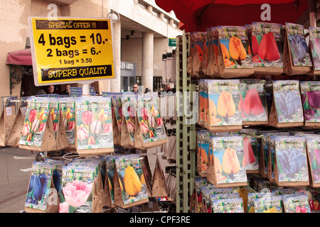 Paper bags with tulip bulbs for sale at the flower market in Amsterdam - Stock Photo
