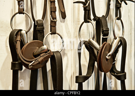 Riding gear in a stable tac room. - Stock Photo