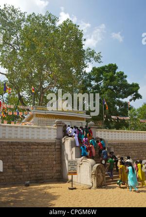 Buddhist pilgrims visit Sri Maha Bodhi, sacred bodhi tree planted in 249 BC, UNESCO World Heritage Site, Anuradhapura - Stock Photo
