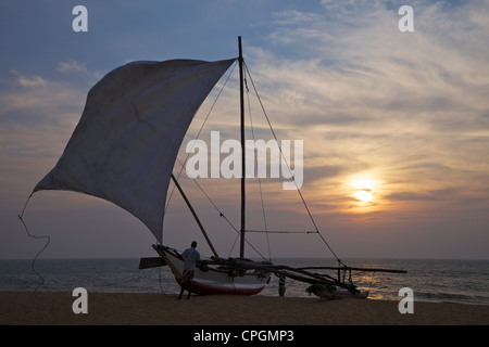 Fisherman taking down the sail of his Oruvas, a traditional outrigger dug-out canoe, on Negombo beach, Sri Lanka, - Stock Photo