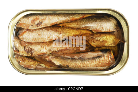 isolated blank tin of fish over white including clipping path