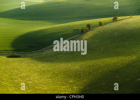 Spring morning in South Downs National Park, East Sussex, England. - Stock Photo
