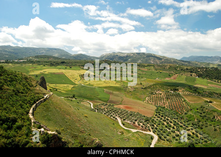 View towards mountains of the Sierra de Grazalema, Ronda, Malaga Province, Andalucia, Spain, Western Europe. - Stock Photo