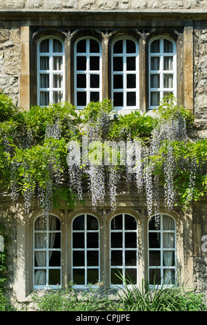 Jesus College Oxford University, Principals Lodgings. Oxfordshire England - Stock Photo