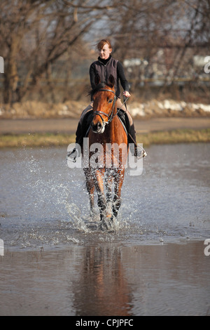 Girl horseback riding on a bay horse through the water of small lake in Russia - Stock Photo