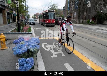 Cyclist in bike lane on Roncesvalles Avenue with 504 Dundas tram and blue hydrangeas city street scene Toronto Ontario - Stock Photo