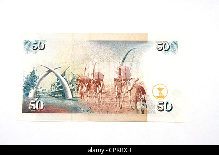 Currency of Kenya (shilling) (reverse side) - Stock Photo
