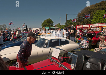 Man reading information on Riley roadster windscreen at classic car show,  E-type Jaguar visible left, Yarmouth - Stock Photo
