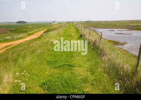 Coastal footpath Hollesley Bay, Alderton, Suffolk, England - Stock Photo