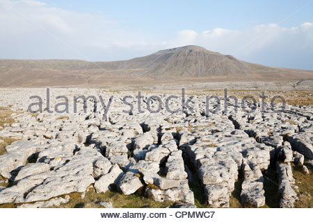 Ingleborough in the Yorkshire Dales, as seen from Scales Moor. - Stock Photo