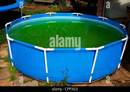 Stagnant swimming pool. - Stock Photo