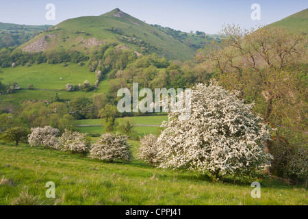 The Manifold Valley, Staffordshire, Peak District, England UK - Stock Photo