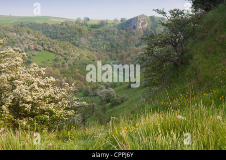The Manifold Valley and Thor's Cave, Staffordshire, Peak District, England UK - Stock Photo