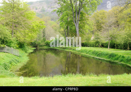 The Fishpond at Valle Crucis Abbey the only remaining Monastic Fishpond in Wales Llangolle Denbighdhire Cymru UK - Stock Photo