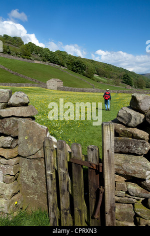 Wooden signs, dry stone walls, Walkers & Ramblers in pasture farmland, North Yorkshire Dales Meadows, Gunnerside, - Stock Photo