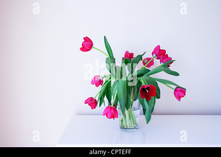 Pink tulips in glass vase - Stock Photo