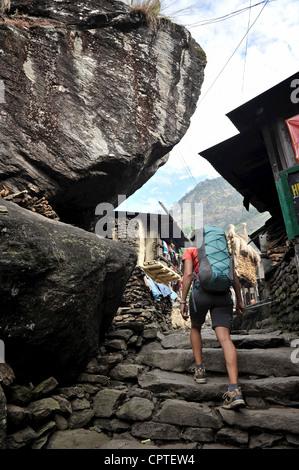 Woman trekking on stone pathway, Jagat, Nepal - Stock Photo
