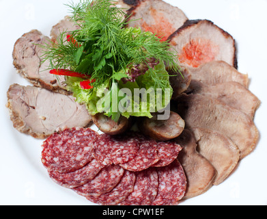 Assorted meat. Cold appetizer and a bundle of green on a white plate - Stock Photo