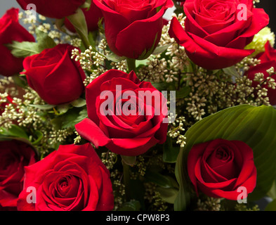 Bunch of Red roses in a valentines day bouquet close up on the flowers - Stock Photo