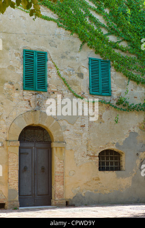 Traditional house with green window shutters and Virginia Creeper, in town of Monticcheillo, Val D'Orcia area of - Stock Photo