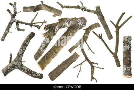 Logs, fire wood set from a apple and cherry tree for smoking. Isolated on white - Stock Photo