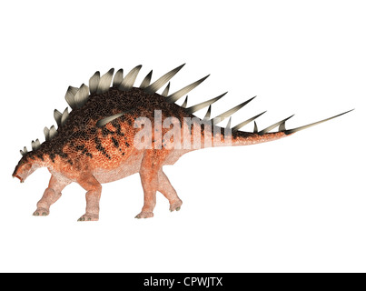 Illustration of a Kentrosaurus (dinosaur species) isolated on a white background - Stock Photo