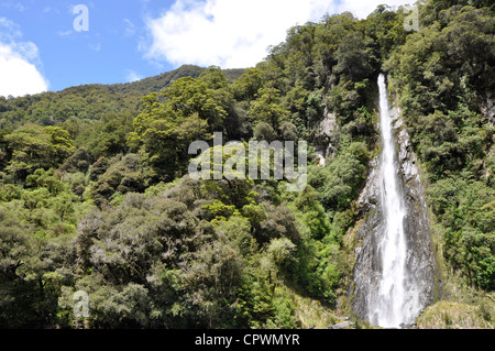 Thunder Creek falls on route 6 Haast river New Zealand - Stock Photo