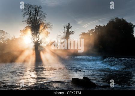 Mulkear river in fog, limerick, ireland - Stock Photo