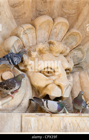 Pigeons drinking from water fountain in Piazza Francesco Ferrucci in Radda-in-Chianti, Tuscany, Italy - Stock Photo