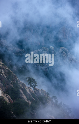 rain clouds hanging over the Col de Bavella, Bavella Mountains, Corsica, France - Stock Photo
