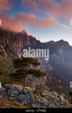 the Col de Bavella at dawn, Corsica, France - Stock Photo