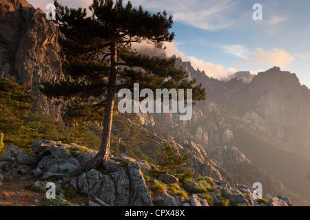 the Col de Bavella, Corsica, France - Stock Photo