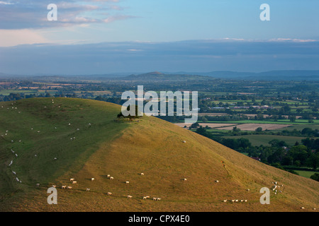 Parrock Hill wiith Glastonbury Tor in the distance, from Corton Hill, Somerset, England, UK