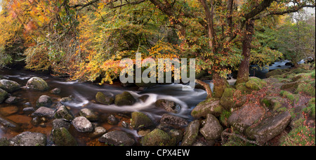 autumn colours along the East Dart River, Dartmoor, Devon, England, UK - Stock Photo