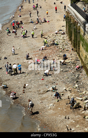 An organised archaeological event on the foreshore of the River Thames at the Tower of London. - Stock Photo