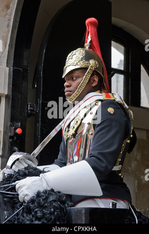 Blues and Royals Horseguard, Whitehall, London, England. - Stock Photo
