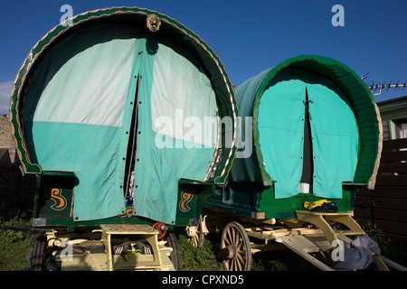 Horses, Wagons and equipment belonging to travelers attending the annual Appleby horse fair, Cumbria Uk - Stock Photo