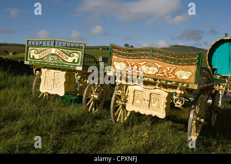 Drays, Horses, Wagons and equipment belonging to travellers attending the annual Appleby horse fair, Cumbria Uk - Stock Photo
