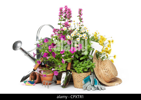 Gardening tools and flowers isolated on white. - Stock Photo