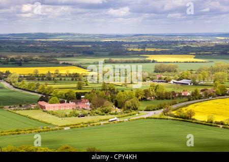 Bucks - Chiltern Hills -view over Aston Rowant -green wheat + yellow rapeseed fields - woodland - farm buildings - Stock Photo