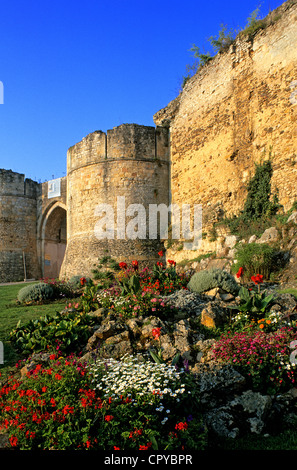 France, Calvados, Falaise, remparts of the castle - Stock Photo