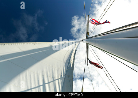 Sails, sailboat, Maui, Hawaii, USA - Stock Photo